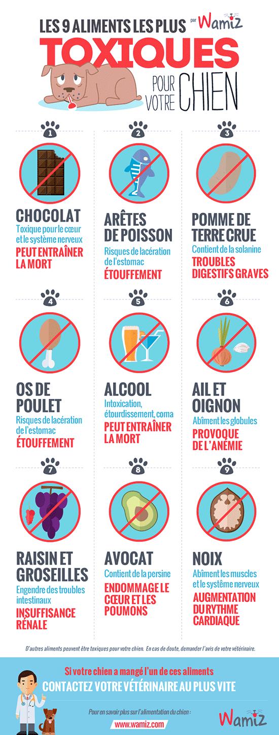 Aliments toxiques ou à éviter pour le chien - Page 3 Aliments-Toxiques-Chiens-Wamiz-mini