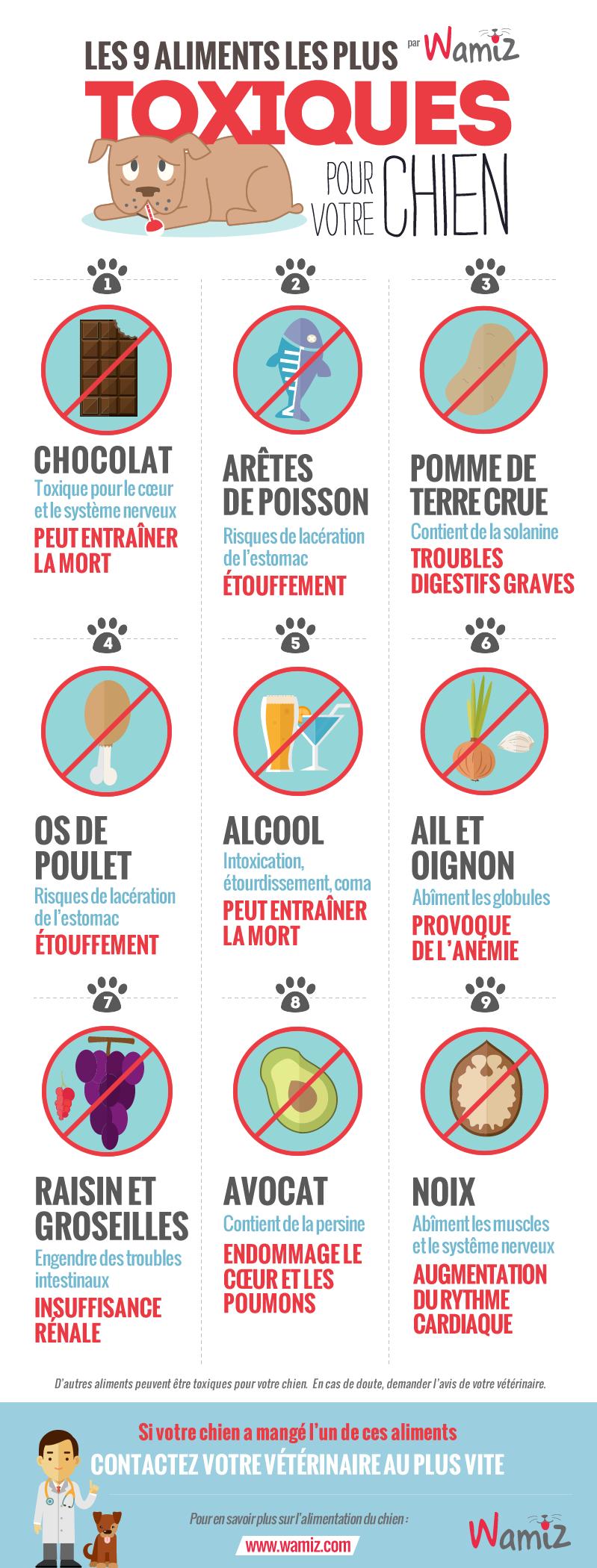 Bien-aimé Les 9 aliments les plus toxiques pour votre chien - Nourrir son  MB34