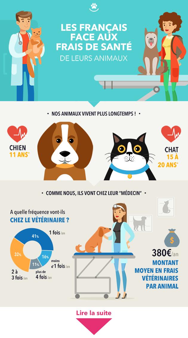 Santé : 1 Français sur 2 ne pourrait pas assumer des dépenses importantes pour soigner son animal