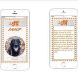 Snoop caa8669, Chien labrador (retriever) à adopter