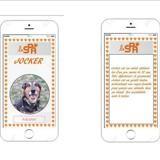 Jocker caa9315, Chien rottweiler à adopter