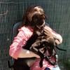 Lucia et selena, Chiot  à adopter