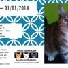 Naïade, Chat à adopter