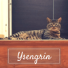 Ysengrin, Chat à adopter