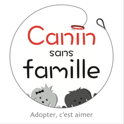 canin sans famille association animaux nord. Black Bedroom Furniture Sets. Home Design Ideas