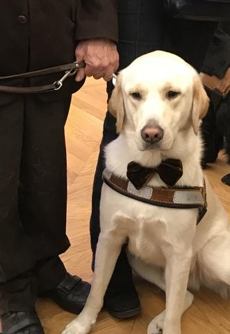 Cérémonie de lancement du parrainage du 1000ème chien guide