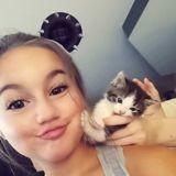 Chat Ceylan Chipie