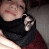 Berlin, rongeur Rat