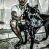 Dyana, chien Cane Corso