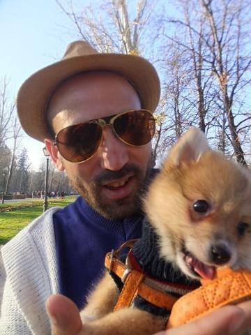 Adorable Chiot Chihuahua, chiot Chihuahua