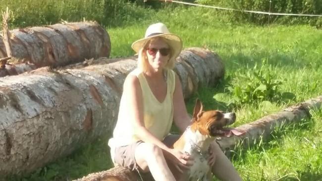 Jedi, chien American Staffordshire Terrier