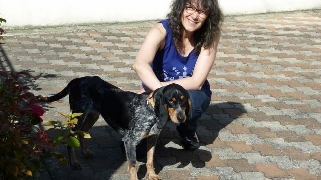 Hilda, chien Bleu de Gascogne