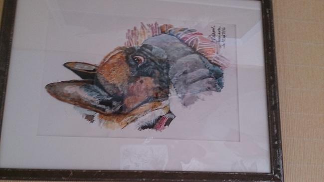 Haviland, chien Bouledogue français