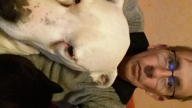 Cayenne, chien Dogue argentin