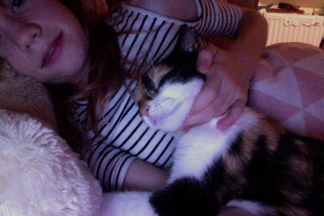 Sweetie, chat Gouttière