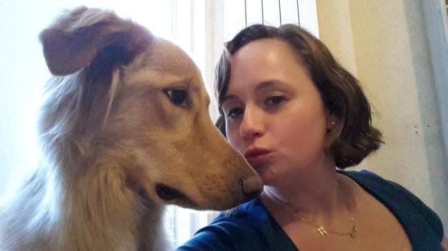 Jamy, chien Hovawart