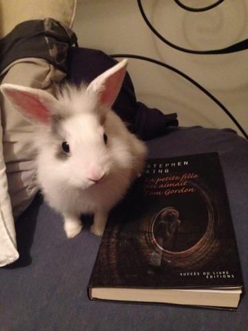 """Mimi, le """"rat"""" de bibliothèque"""