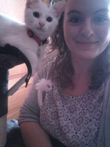Milka, chaton