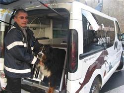 Atos, chien Bouvier bernois