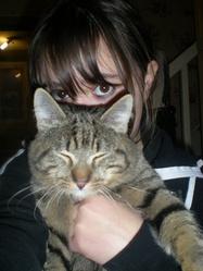 Angel, chat Gouttière