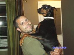 Missy, chien Dobermann