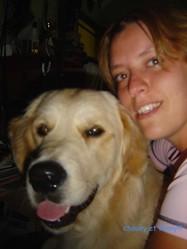 Chouky, chien Golden Retriever