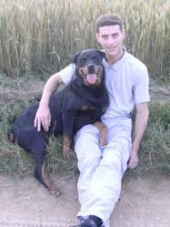 Atyla, chien Rottweiler