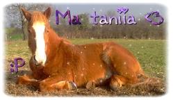 Tania, autres