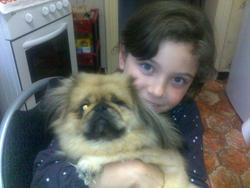 Estebane, chien Pékinois