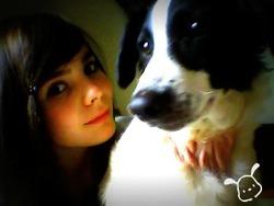 Alphie, chien