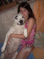 Angel, chien Dogue argentin