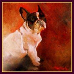 Annabelle, chien Bouledogue français