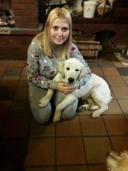 Bianca, chien Golden Retriever