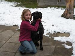 Blanca, chien Cane Corso