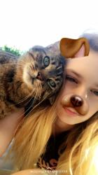 Boudha, chat Gouttière