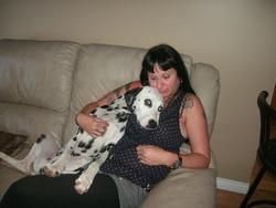 Bucky, chien Dalmatien