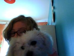 Cassy, chien Bichon maltais