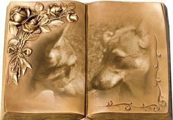 Cheyenne, chien Chien-loup tchèque