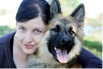Chiensdefrance, chien Berger allemand