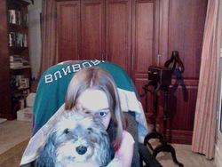 Chloe, chien Griffon à poil dur Korthals