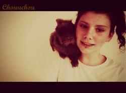 Chouchou, rongeur Lapin