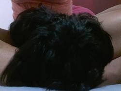 Choukette, chien Yorkshire Terrier
