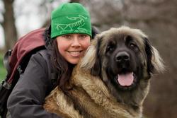 Cira Vom Nonnenwald, chien Leonberger