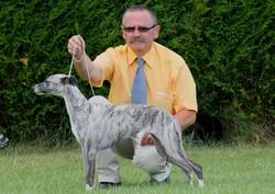 Coco-Chanel Von Hoëhenzoller, chien