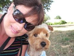 Crapule, chien Yorkshire Terrier