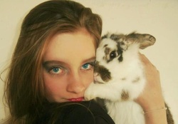 Cutty, rongeur Lapin