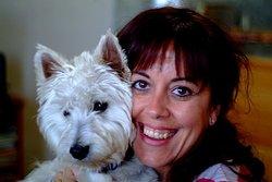 Dexter, chien West Highland White Terrier