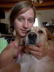 Dobey, chien Labrador Retriever