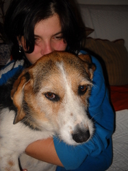 Lula, chien