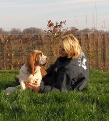 Fair Play Du Haras De La Vergne, chien Basset Hound